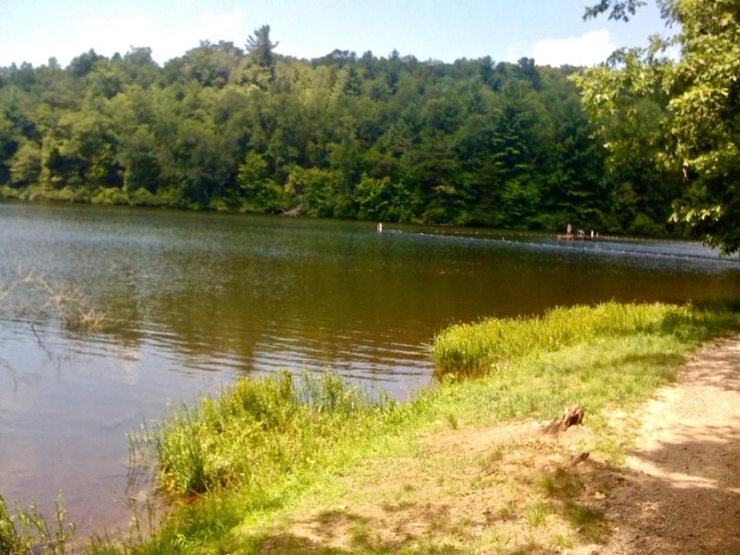 Lake Winfield Scott Platform - North Georgia Swimming Holes & Waterfalls You Can Swim In