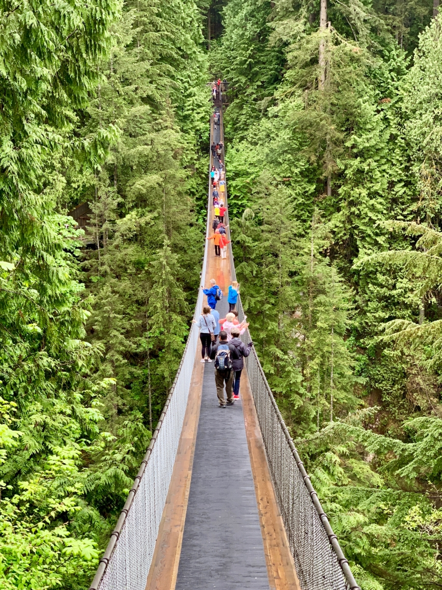 On Capilano Suspension Bridge - Tour Capilano Suspension Bridge Park and See Vancouver in a Day