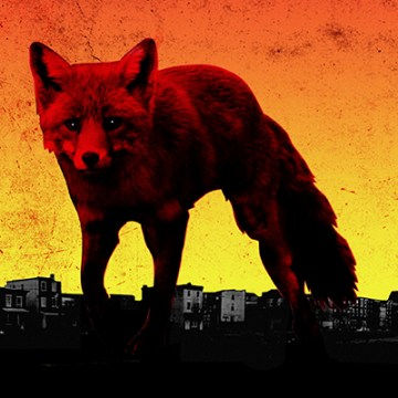 The Prodigy's sixth studio album