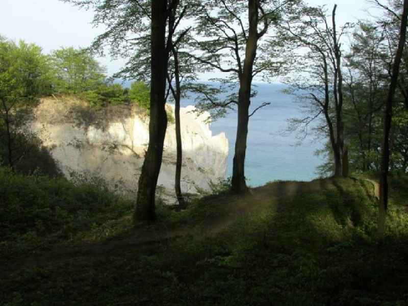 View of the white cliffs from the top