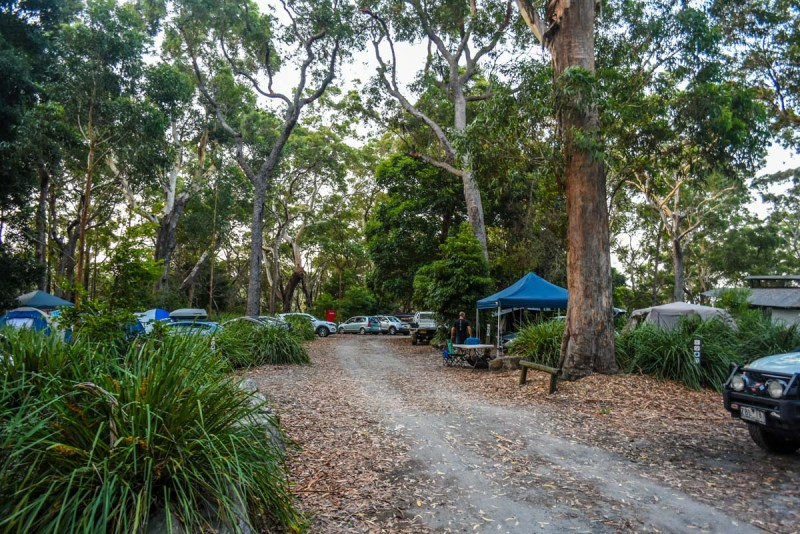 Green Patch D Campground Booderee National Park, Jervis Bay, NSW