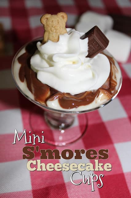 Mini S'mores Cheesecake Cups from Living On Cloud Nine