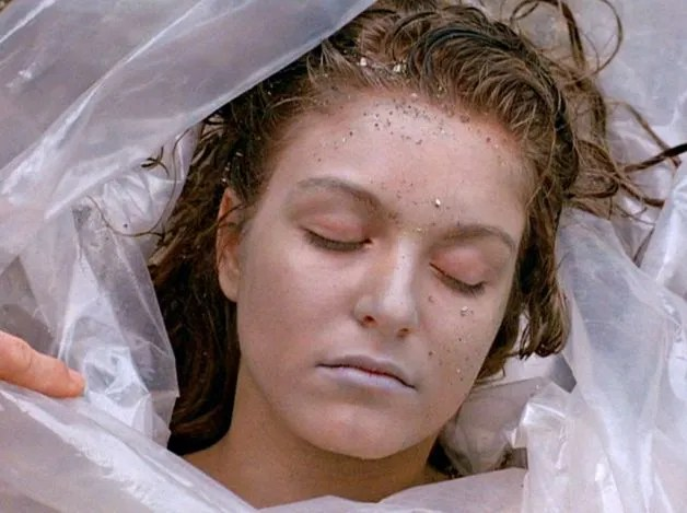 Image result for laura palmer wrapped in plastic