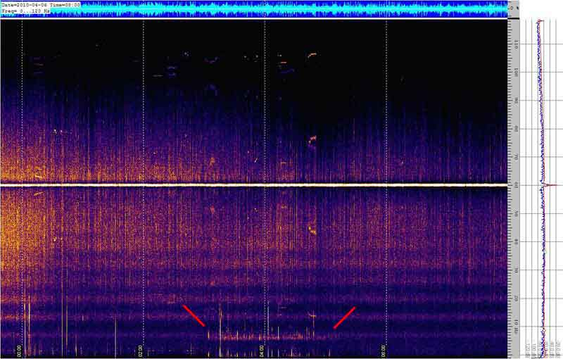 Spectrogram of the Schumann resonances #6