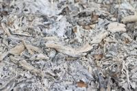Fireplace Ashes In Compost. 147 Things You Can Compost And ...