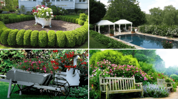 awesome and cheap landscaping