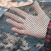 Leaf Nets