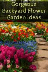 Beautiful Backyard Flower Gardens