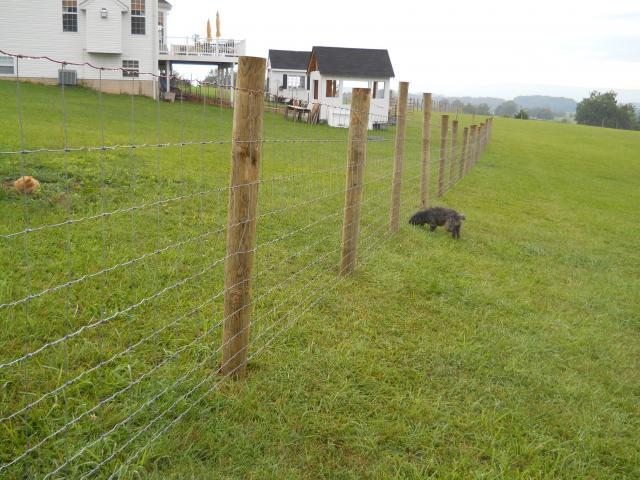 Fence Stretcher Unroller