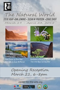 Opening Reception March 21st
