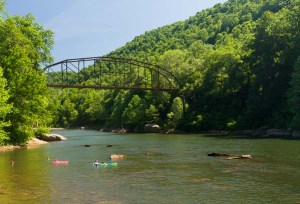 Swimmers in the Cheat River