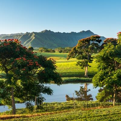 Top 10 Instagrammable spots on Kauai