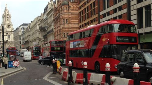 red_buses