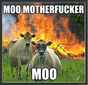 moo motherfucker, moo