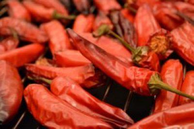 Chipotle selbst räuchern - Jalapenos mit Mequite smoken
