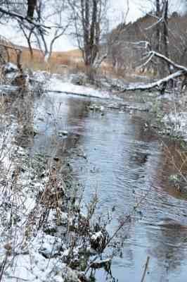 Gracie Creek auf der Morgan Ranch