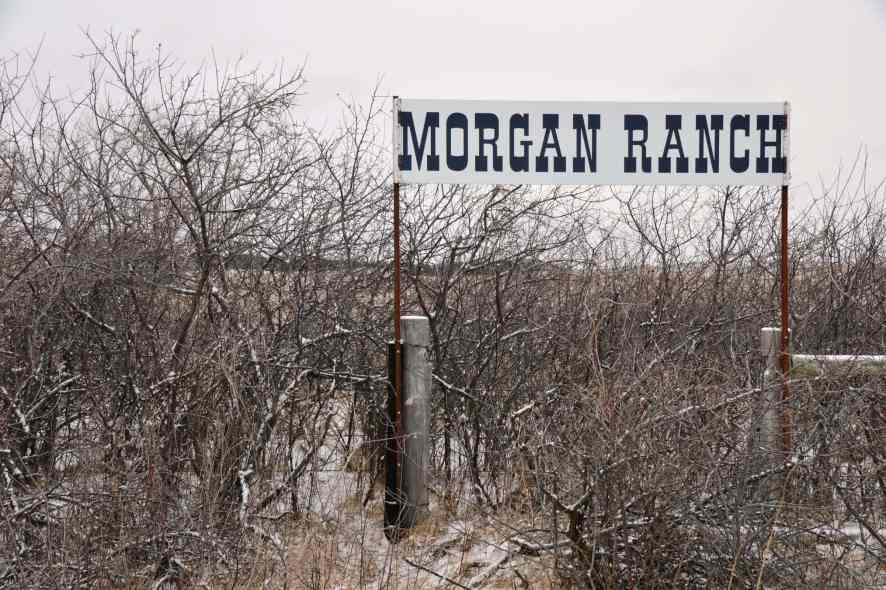 Morgan Ranch Edelfleisch aus den Nebraska Sandhills - Ein Blick auf die Zucht von Dan Morgan
