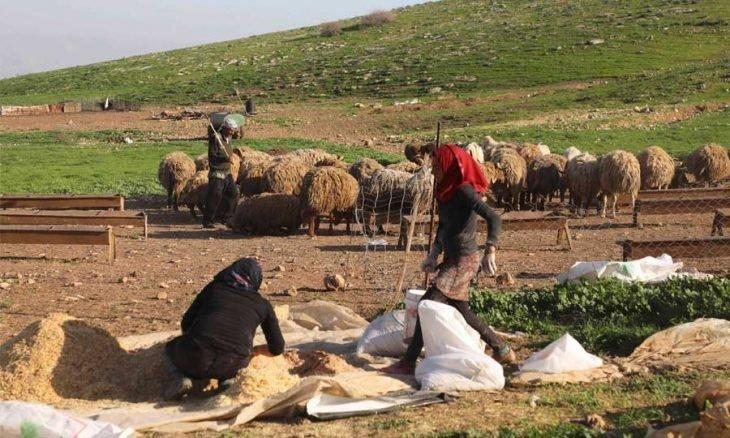 Photo of «عبر الأردن»… مشروع «القطار» من المتوسط إلى «الجزيرة العربية»: لماذا يهتم الأمريكيون وغيرهم فجأة؟