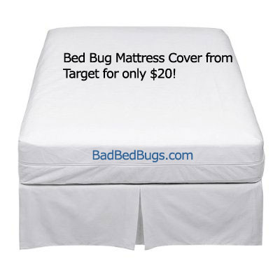 dust mite pillow covers target  Home Decor
