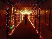 Decorate Your Dorm for the Holidays (16 Photos)