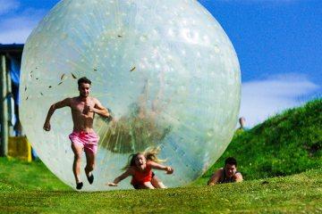 Craziness in New Zealand