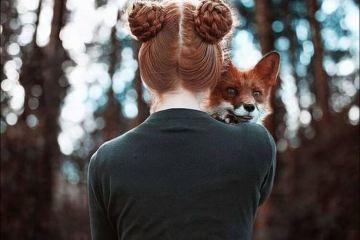 Daily Fresh Baked Randomness (35 Photos) cute fox