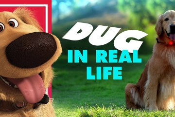 Dug in Real Life