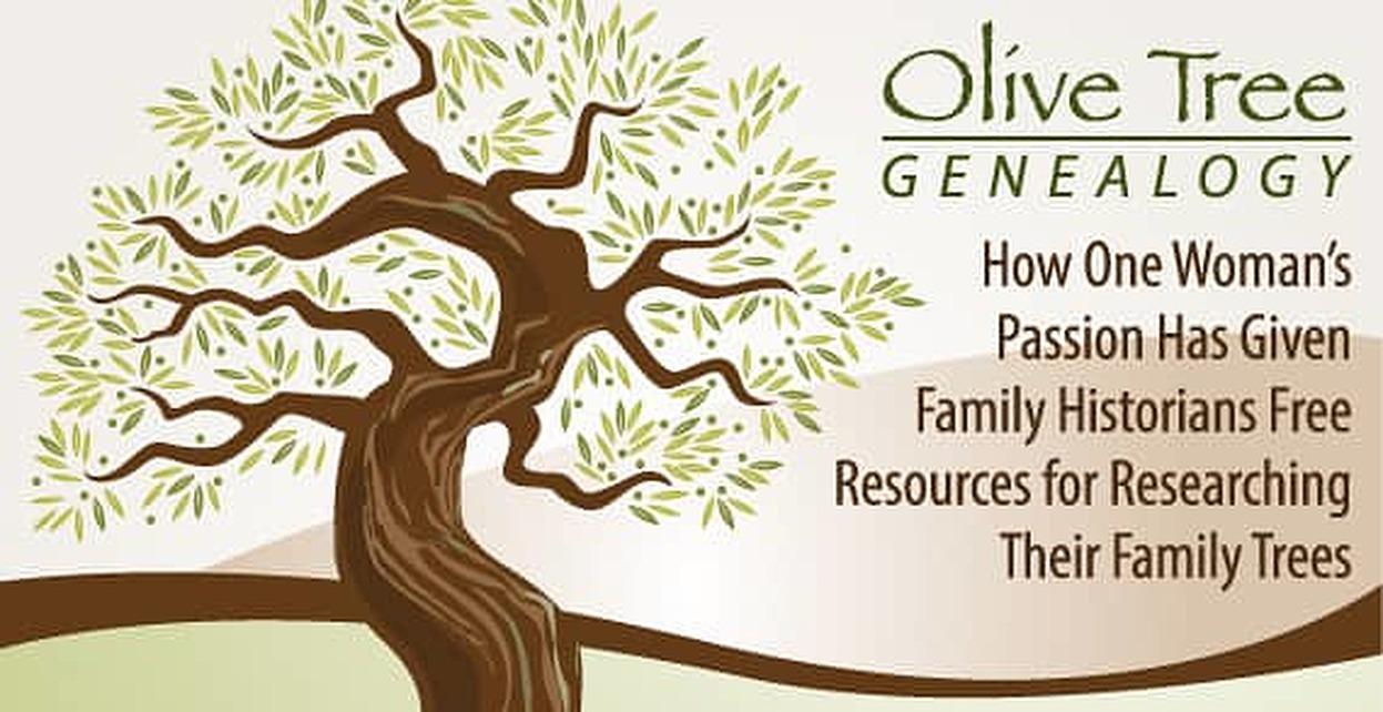 olive tree genealogy how