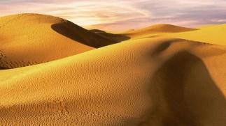 Sunset Dunes, Monika Wasilewska