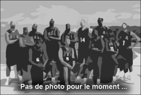 Badmintonic Saint gilles croix de vie Vendée 85 https://www.badmintonic85.fr/ equipes