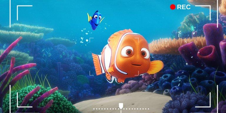 alla ricerca di nemo Dory's Reef Cam