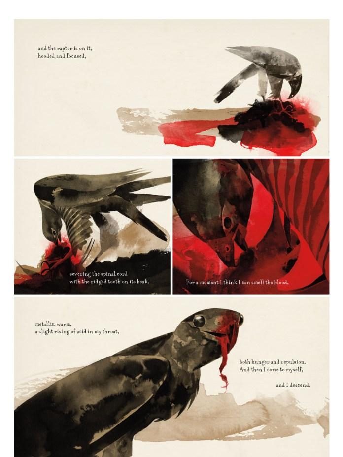 Raptor: A Sokol Graphic Novel, anteprima 03