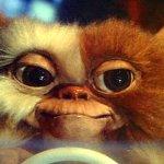 Gremlins: il nuovo film sarà un reboot?