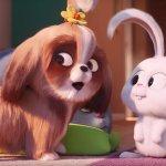 Pets 2 – Vita da Animali: come comportarsi come un gatto nel nuovo teaser italiano