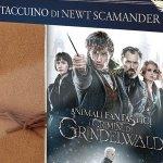 Animali Fantastici: il taccuino di Newt Scamander insieme ai DVD dei primi due film in un nuovo cofanetto home video