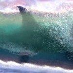 Meg: iniziate le riprese, prima foto dal set del thriller di Jon Turteltaub dedicato allo squalo gigante