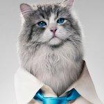 Una Vita da Gatto: Kevin Spacey nel corpo di un felino domestico nel trailer del nuovo film di Barry Sonnenfeld