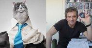 Una Vita da Gatto, la videorecensione