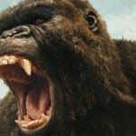 Kong – Skull Island: 40 immagini in alta risoluzione, un B-Roll sul set del film