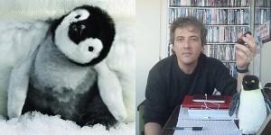 marcia dei pinguini