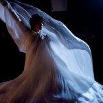 Io Danzerò, la recensione