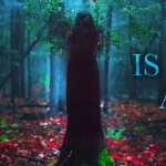 The Beast is an Animal: in arrivo un film tratto dal romanzo fantasy di Peternelle van Arsdale