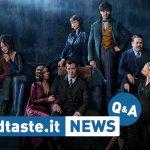 BadTaste News Q&A – Episodio #17