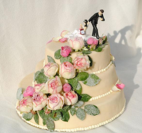 Unsere Sahnestcke  Hochzeitstorten