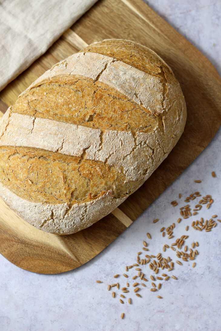 Schnelles Maisbrot | bäckerina.de