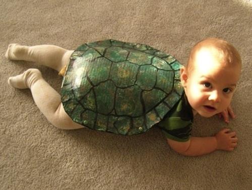 fantasia tartaruga