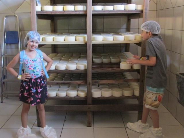 fazenda de queijos