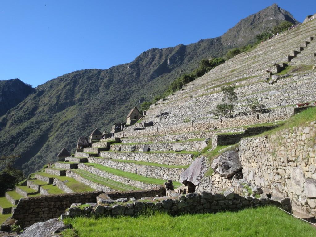 Terraços de Machu Picchu