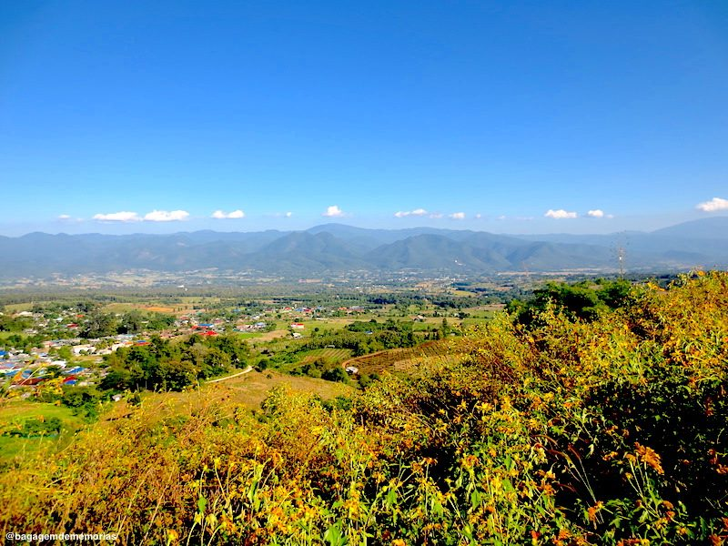 pai_view point