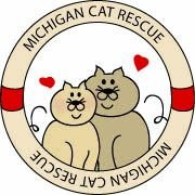 Bagheera the Diabetic Cat wants you to help Michigan Cat Rescue